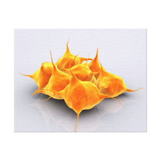 Conceptual Image Of A Group Of Platelets Canvas Print