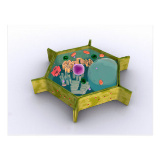 Conceptual Image Of A Plant Cell Postcard
