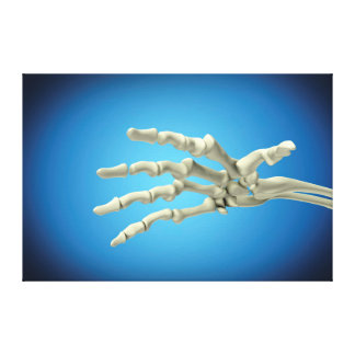 Conceptual Image Of Bones In Human Hand 1 Canvas Print