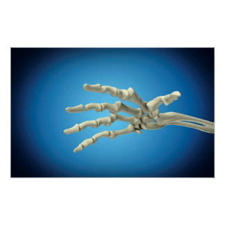 Conceptual Image Of Bones In Human Hand 1 Poster