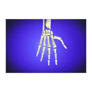 Conceptual Image Of Bones In Human Hand 2 Canvas Print