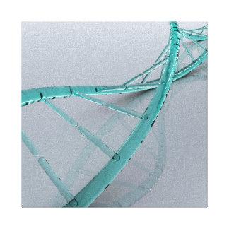 Conceptual Image Of DNA 3 Canvas Print