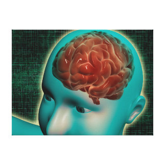 Conceptual Image Of Female Body With Brain 1 Canvas Print