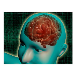 Conceptual Image Of Female Body With Brain 1 Postcard