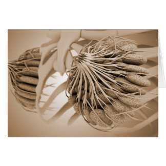 Conceptual Image Of Female Breast Anatomy 5 Card