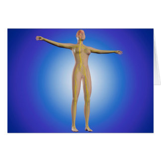 Conceptual Image Of Female Nervous System Card