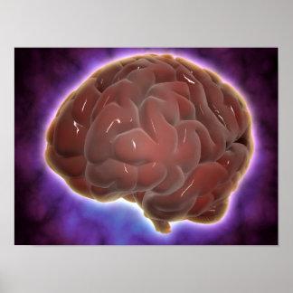 Conceptual Image Of Human Brain 6 Poster