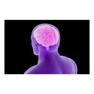 Conceptual Image Of Human Brain 9 Poster