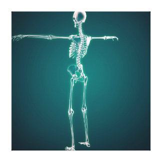 Conceptual Image Of Human Skeletal System Canvas Print