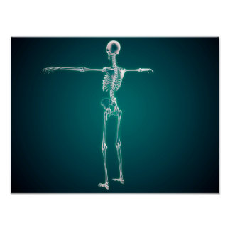 Conceptual Image Of Human Skeletal System Poster