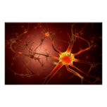 Conceptual Image Of Neuron 1 Poster