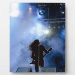 concert-316381 concert, singer, stage, show, music display plaques