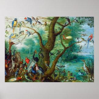 Concert of Birds by Jan van Kessel Print