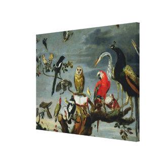 Concert of Birds Canvas Print