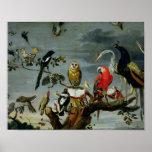 Concert of Birds Poster