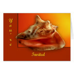 Conch Cards