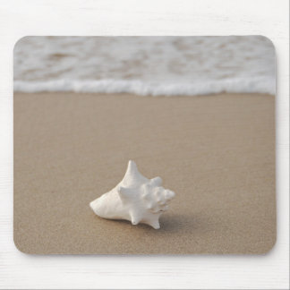 conch on the beach mouse pad