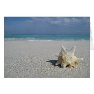 Conch on the Beach: Varadero, Cuba Card