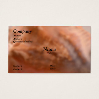Conch Pattern Business Card