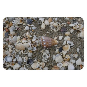 Beach Themed Conch Seashell Treasures Magnet
