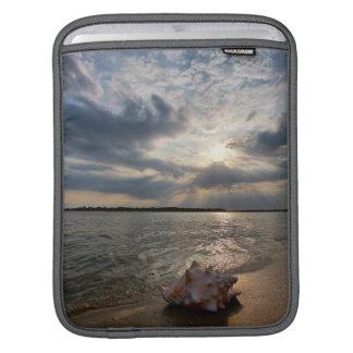 Conch Shell At Beach | St. Augustine, Fl iPad Sleeve