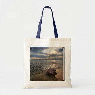 Conch Shell At Beach | St. Augustine, Fl Tote Bag