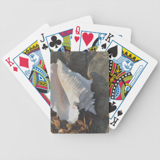Conch Shell Bicycle Card Decks