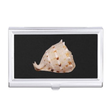 Professional Business Conch Shell Business Card Holder