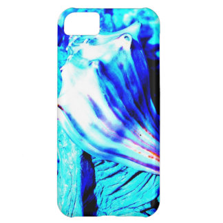 Conch Shell IPhone 5 case