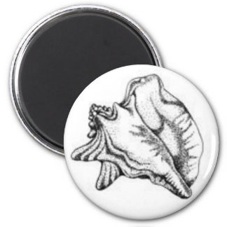 Conch Shell magnet