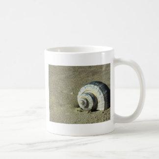 Conch Shell Mug