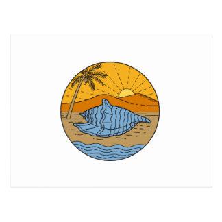 Conch Shell on Beach Mountain Sun Coconut Tree Mon Postcard
