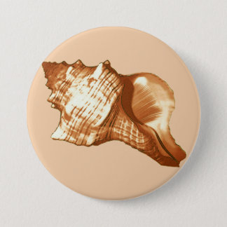 Conch shell sketch - brown, white and tan button