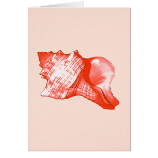 Conch shell sketch - coral, shell pink and white card