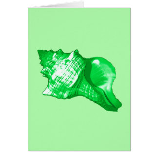 Conch shell sketch - emerald and lime green card