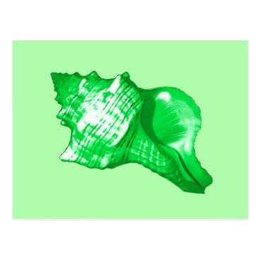 Beach Themed Conch shell sketch - emerald and lime green postcard