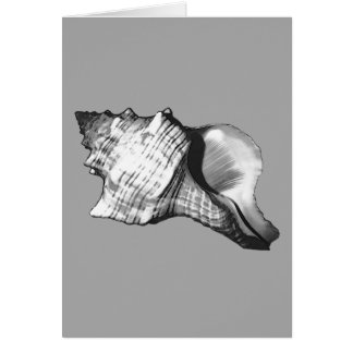Conch shell sketch - shades of grey and white card