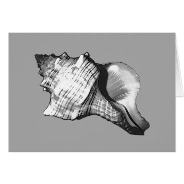 Beach Themed Conch shell sketch - shades of grey and white card