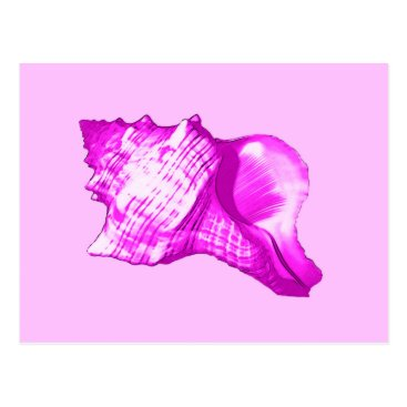 Beach Themed Conch shell sketch - shades of orchid and white postcard