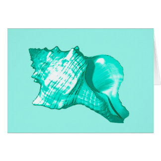 Conch shell sketch - turquoise, white and aqua card