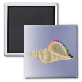 Conch Shell With Rainbow Pearls Magnet