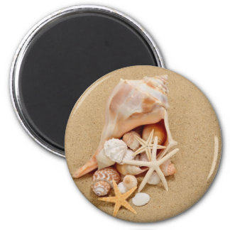 Conch Shell with Shells and Starfish 2 Inch Round Magnet