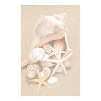 Conch Shell with Shells and Starfish Stationery