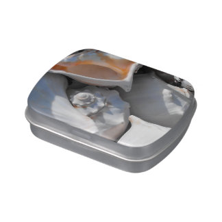 Conch Shells Closeup Jelly Belly Tins