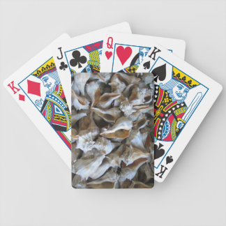 """""""Conch Shells"""" - Playing Cards"""