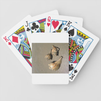 Conch shells poker cards