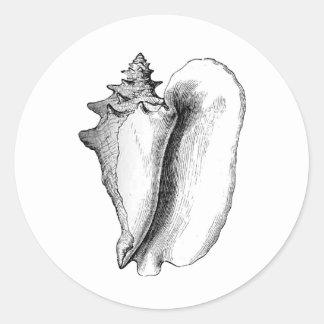 Concha de la reina (línea arte) pegatina redonda
