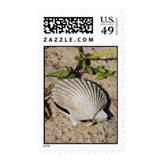 Concha de peregrino Shell de Nantucket Sellos