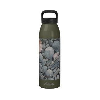 Concha de peregrino Shell y piedras negras Botallas De Agua