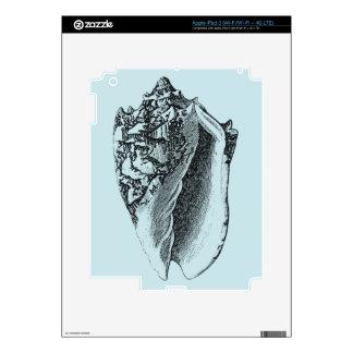 Concha Shell de la aguamarina Pegatinas Skins Para iPad 3